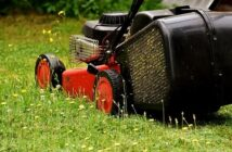 5 Garden Tools You Should Rent instead of Buying 1