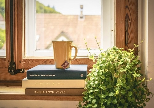3 books, a cup of tea, and a plant by the window.